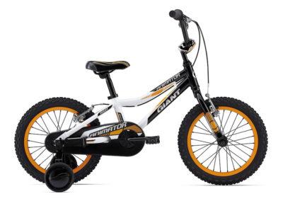 Kids' Bike 16″ & 20″